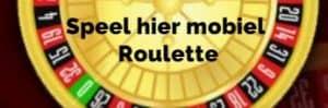 Het Roulette Spel